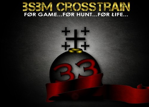 BSBM Crosstrain